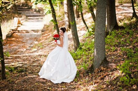 Los 20 vestidos de novia m�s espectaculares