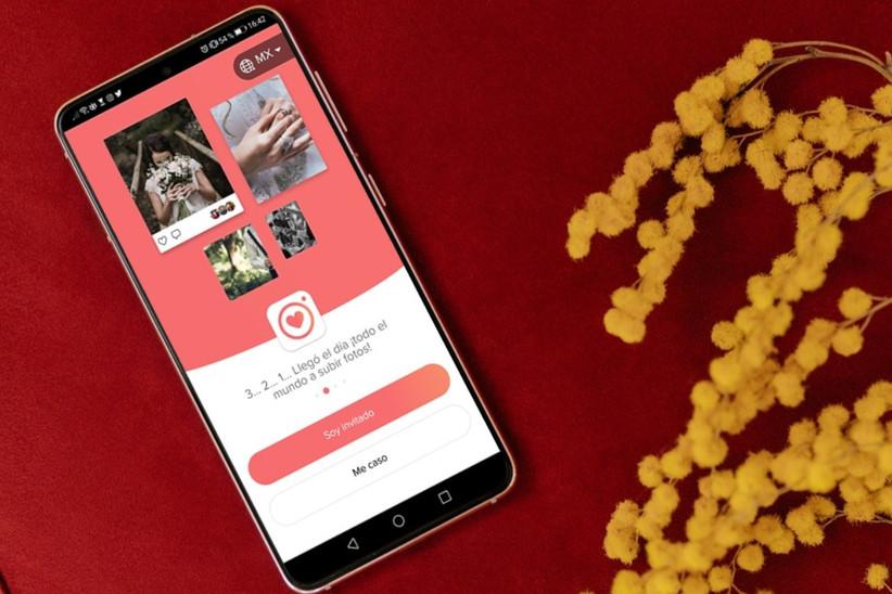 app wedshoots México