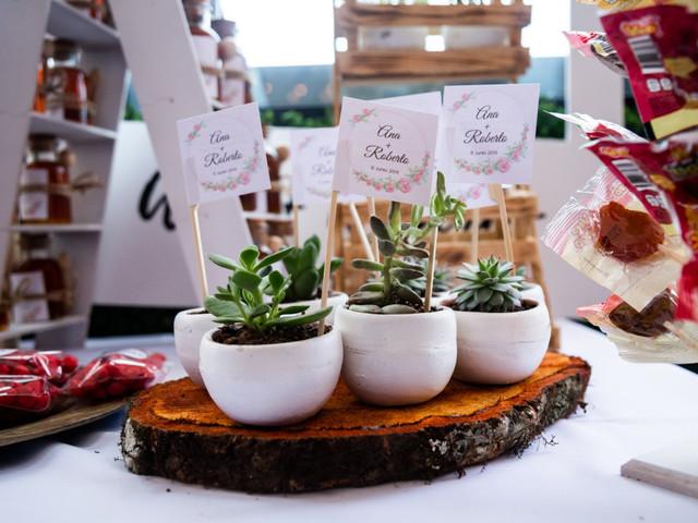 8 recuerdos para boda ecológicos: ideas para un festejo sustentable