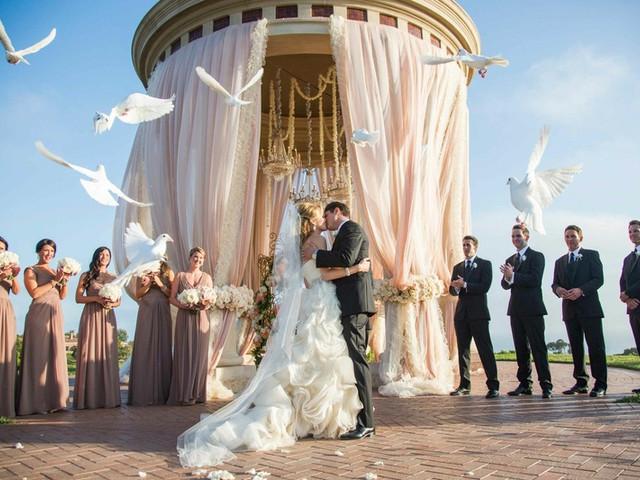 Liberación de mariposas y palomas en su boda, ¡mensajeras de amor!