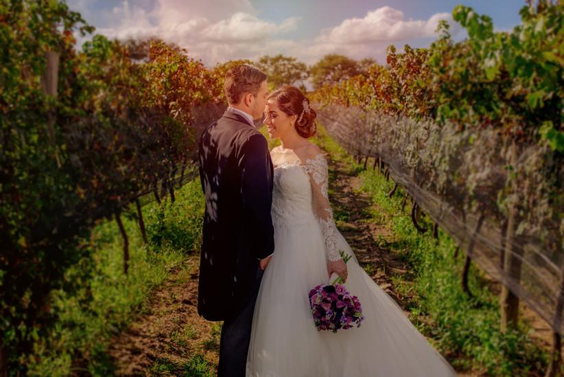 novios en sesión fotográfica de boda en viñedos
