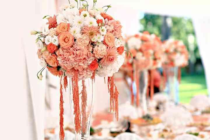 Rosas Canela