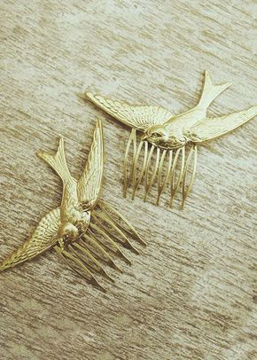 swallows, 227