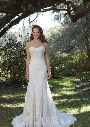 MISS PLUS, Pronovias