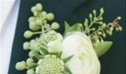 Florería Phalenopsis 3