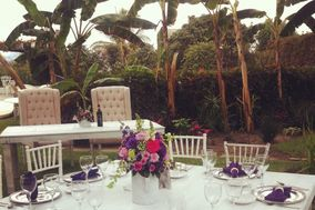 Shandy Banquetes