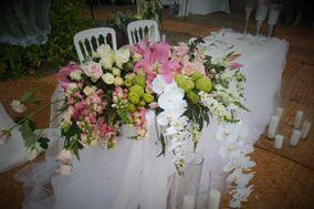 Flores Burelli