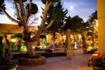 Iluminaci�n jardines de Hacienda de Flores