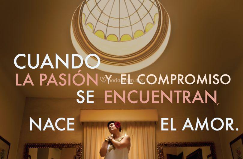 De la pasión nace el amor.