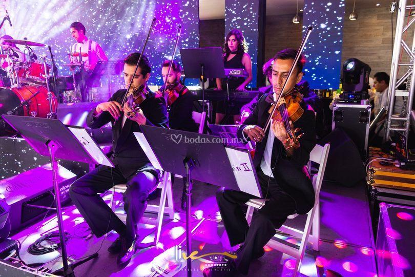 Live concerto