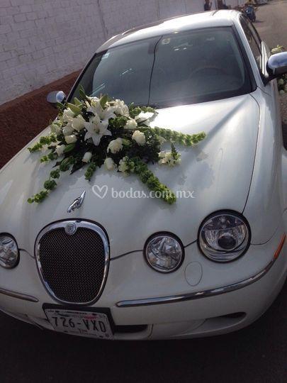Jaguar S Type con flores