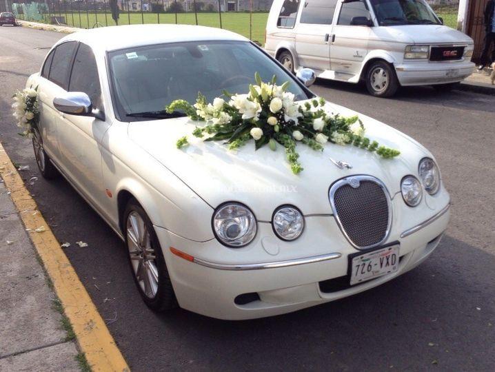 Magnifico Jaguar S Type