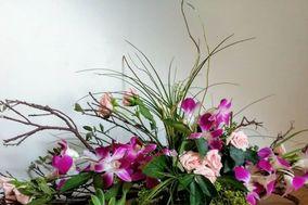 Diseños Florales Miranda
