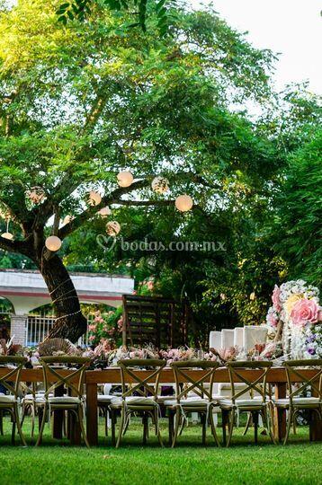 Ana Azpeitia Wedding & Events Planner