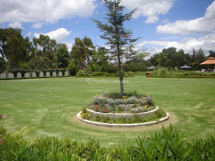 Jard n principal de rancho tepotzotl n foto 9 for Jardin principal