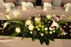 Florerías Tuxapan