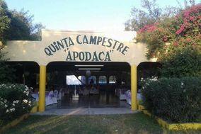 Quinta Apodaca