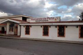 Recepciones Hacienda de Peña
