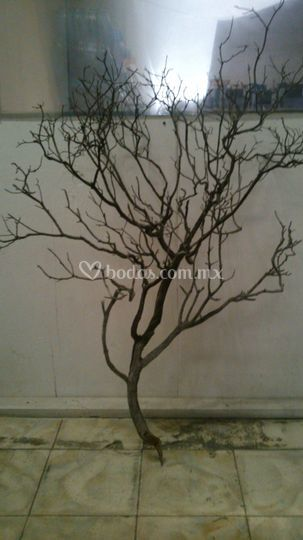Árbol natural
