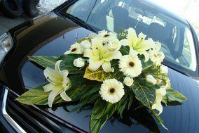 Zazil-Ha Arte y Diseño Floral