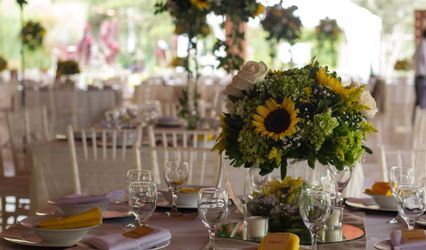 Banquetes Gourmet 1