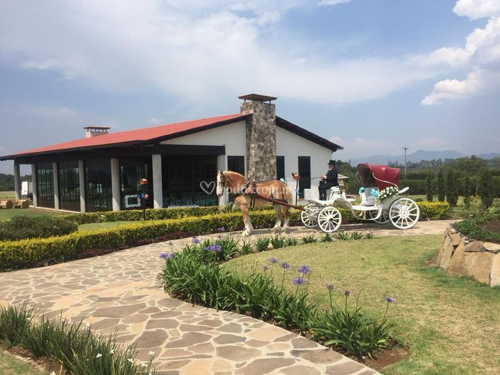 Rancho San José