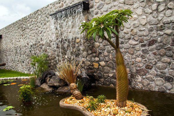 Jard n villa trisara for Jardin villa xavier jiutepec