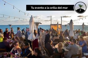 Terra Noble Restaurante