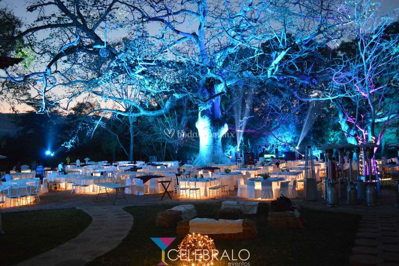 Celebralo eventos for Iluminacion ambiental