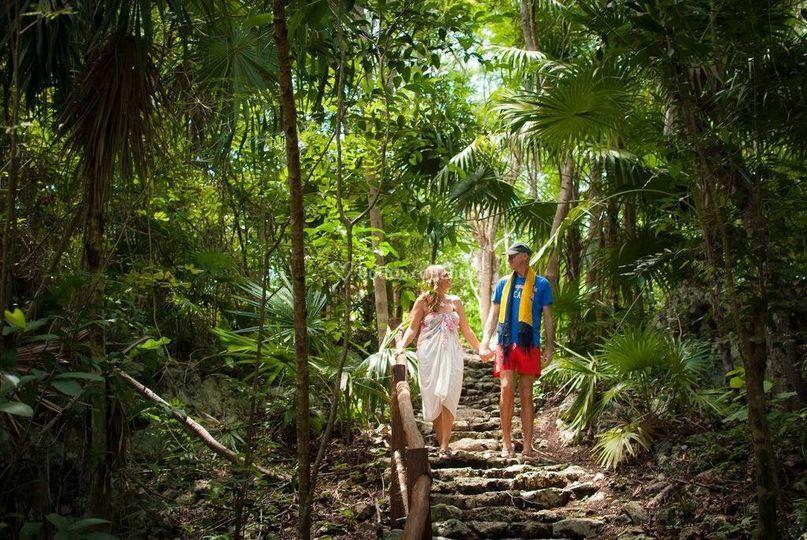 Paseo en la selva