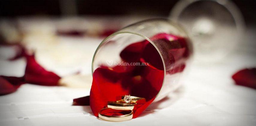 Nuestros anillos