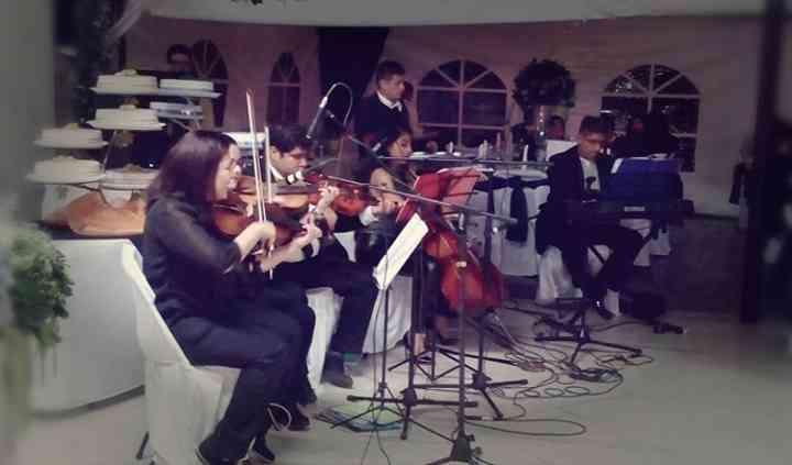 Cuarteto de violines en boda