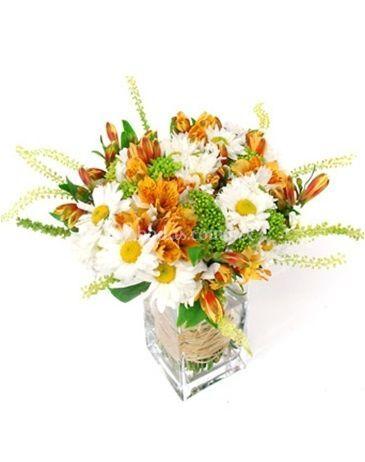 Bouquets margaritas