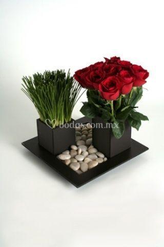 Dellate minimalista de rosas y cebollin