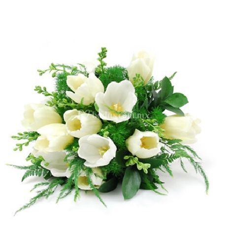 Ramos de novia   tulipanes blancos, plumoso, ruscus
