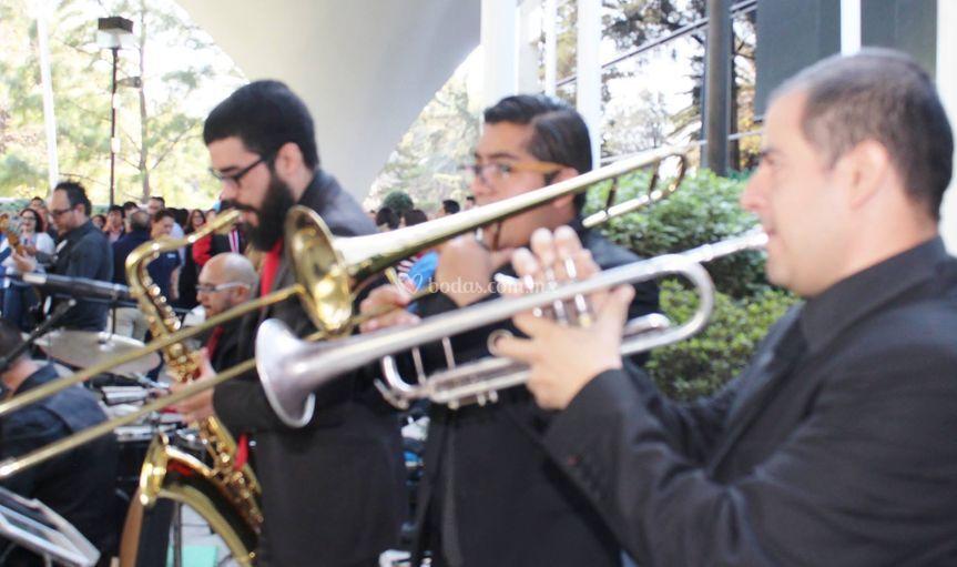 Café con leche mx orchestra