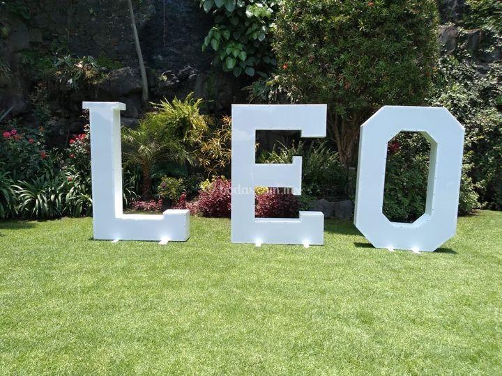 Leo blancas
