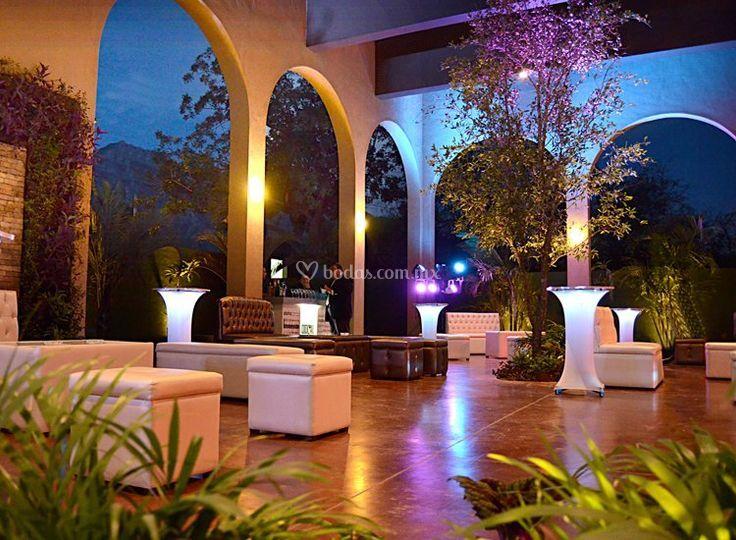 Natural salón terraza