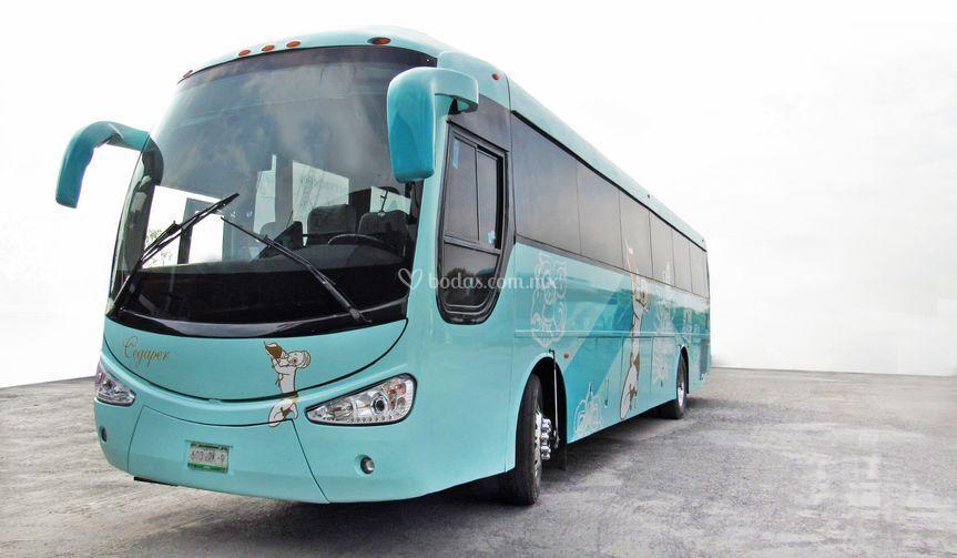 Autobús 45 plazas