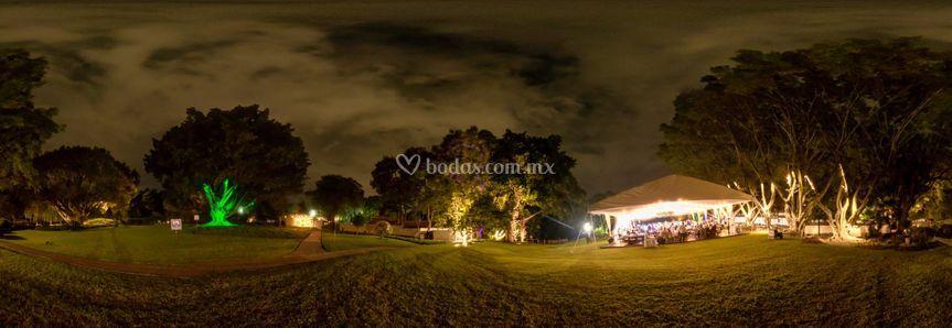 Jardín noche