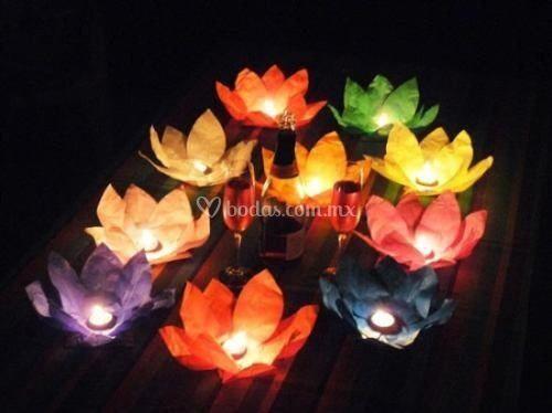 Flor de loto linterna