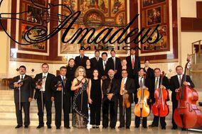 Amadeus Musicale
