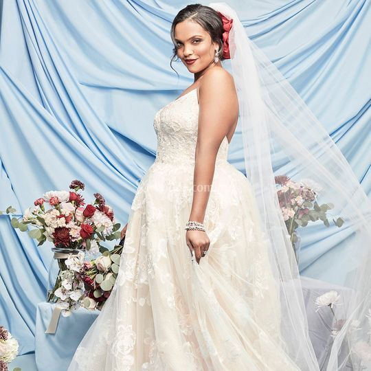 David's Bridal Mx