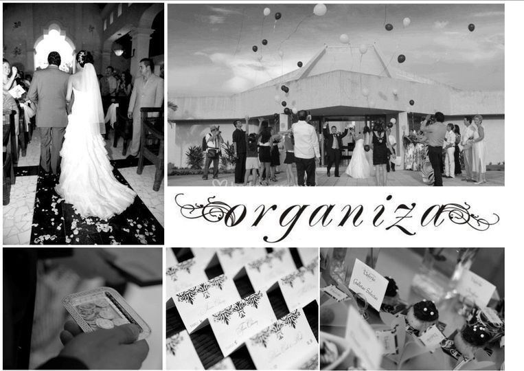 Wedding Specialists by Organiza