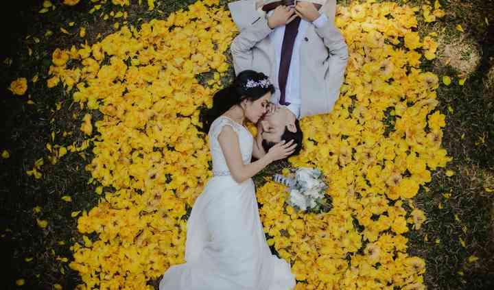 Cama de flores