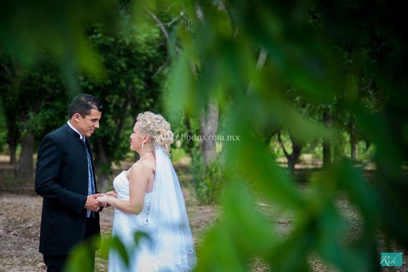 Set formal boda nogalera