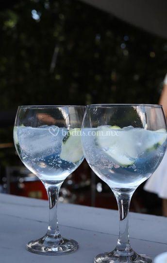 Nada más fresco que un gin