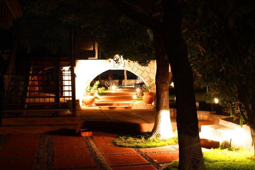Camino jardines noche