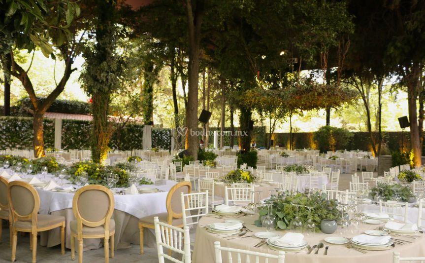 Jard n mayita de banquetes mayita fotos for Jardin los cedros