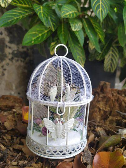 Ritual de liberación mariposas